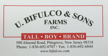 Bifulcos Farms Bifulco Tall Boy Brand Pittsgrove New Jersey USA